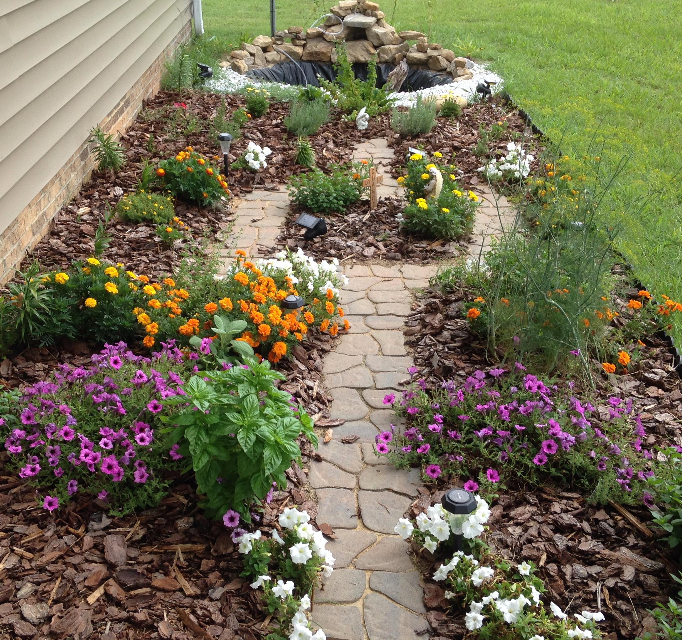 flower and herb garden 2