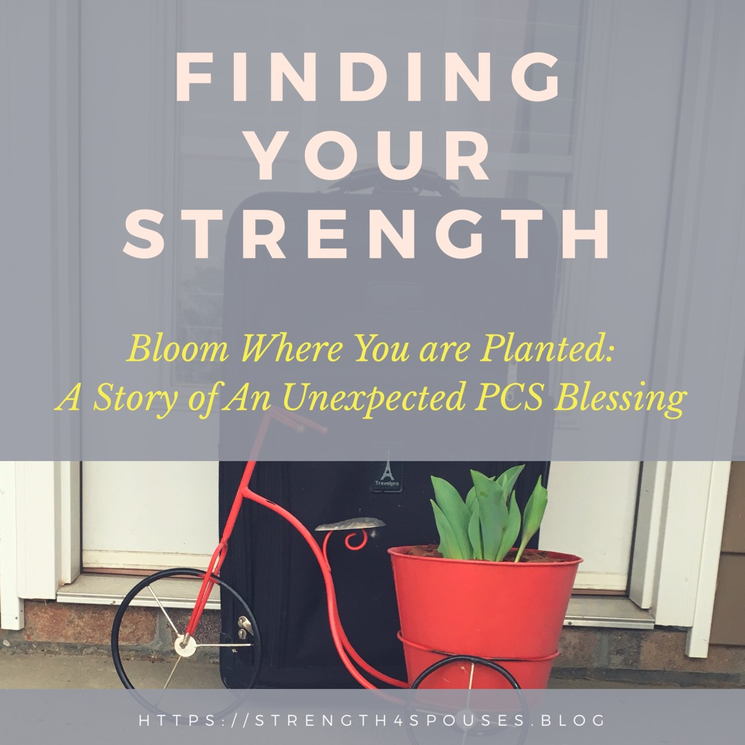 Bloom Where you are Planted: A Story of an Unexpected PCS Blessing