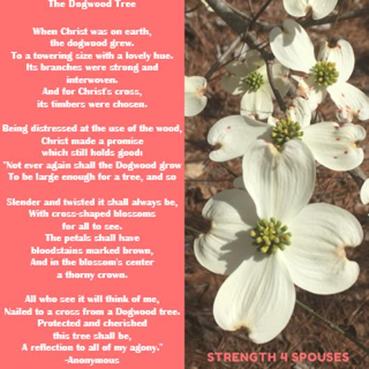 Dogwood_poem